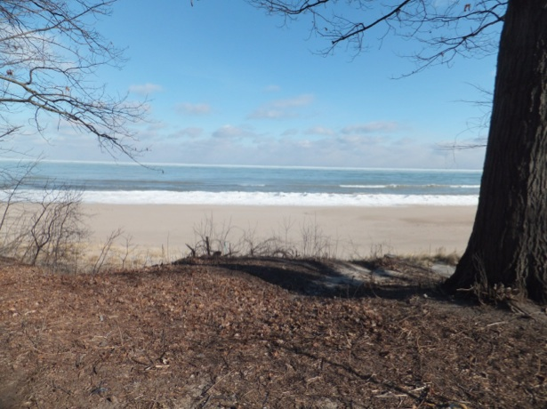 January 22, 2013, looking northeast along lakeshore, Wilmette, Illinois, Langdon Park