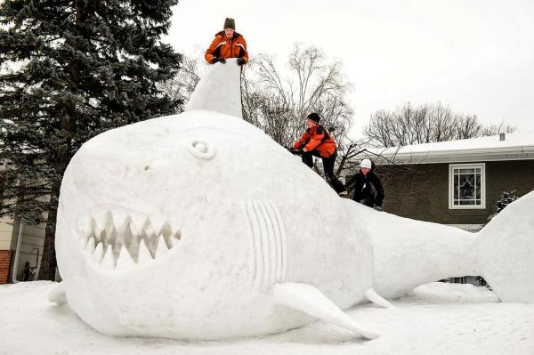 In Minnesota, this family built a sweet snow shark. (source)